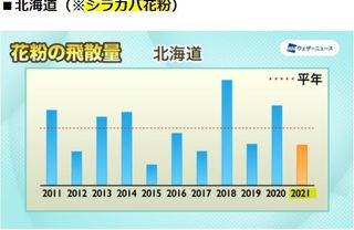 シラカバ花粉飛散量予測 WN.JPG