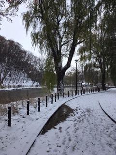 月寒公園の雪景色.JPG
